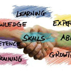 Skills Assessmentで選ぶべき職業とは